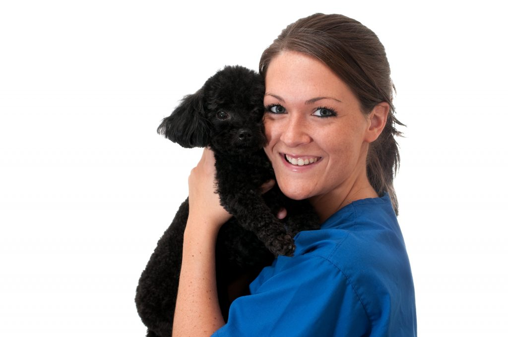 relief veterinary technicians